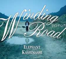 windingroad_scene01